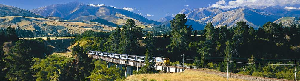 Magnificent views of rural NZ!